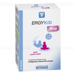 ERGYKID MAG 14 SACHETS GOUT FRUITS ROUGES